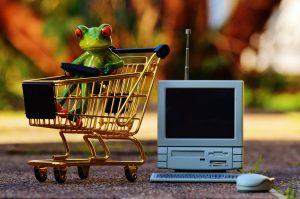 Grenouille qui prépare sa liste d'achat