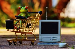 Frog planning his shopping