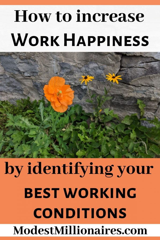 Increase your work happiness by identifying your best working conditions - flowers in front of wall