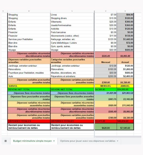 Budget Minimaliste Simple Survol